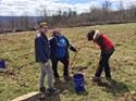 Jacob Garms, Brooke Schiel, and biology teacher Mrs. Rood plant trees.